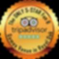 royal oak escape room tripadvisor award