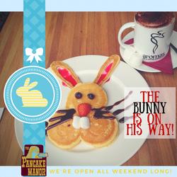 bunny open.png