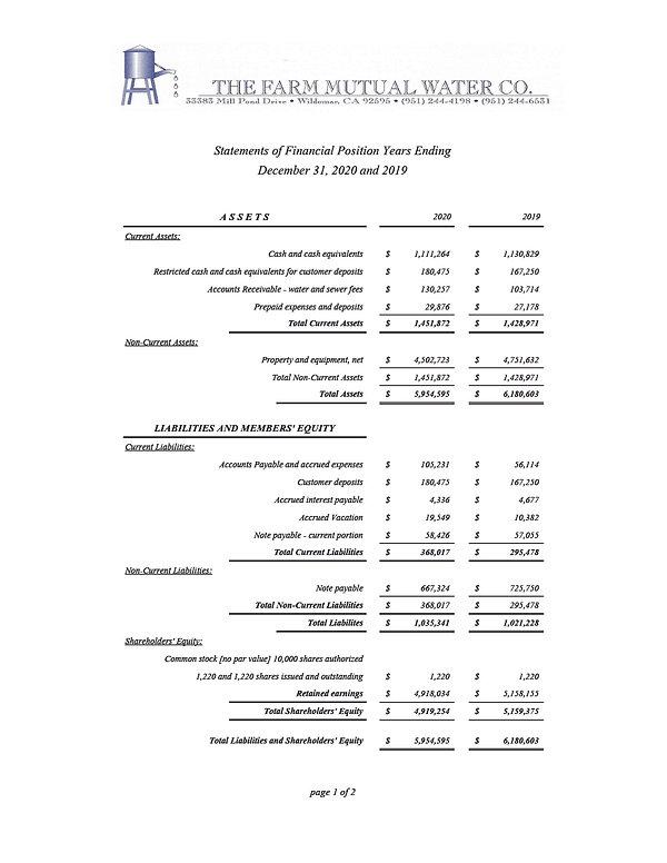 FINANCIAL STMTS 2020-1.jpg