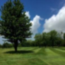Hamilton Public Golf
