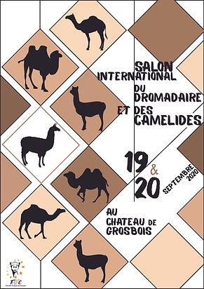 Affiche-Salon-2020-2-BIS-avec-logo-FFC-p