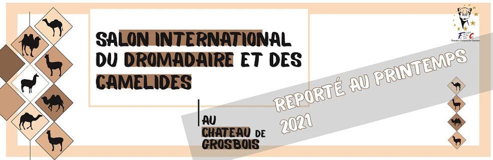 Bandeau_BAS_DE_MAIL_-_REPORT_PRINTEMPS_2
