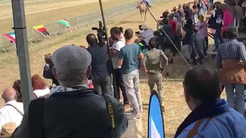 arrivée de la coupe International  de courses de chameaux Janvry /France 2019