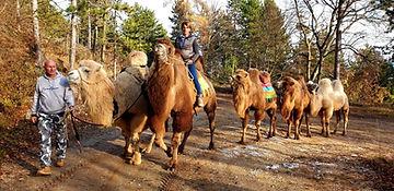 Astrid et Heinz et leurs chameaux Autric