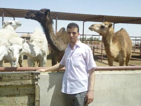 Madani Hassani consultant France-Algerie: Projets de développement de la filière lait de chamelle