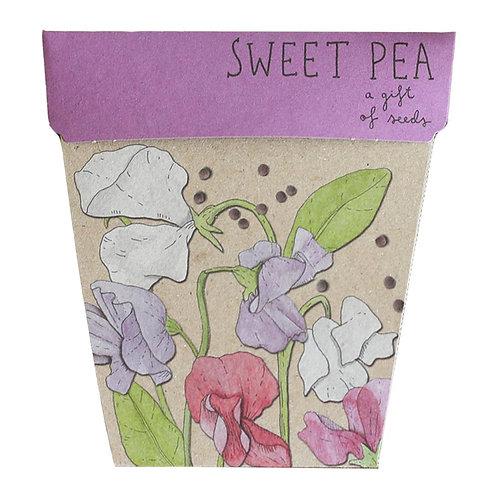 Sweet Pea Gift of Seeds