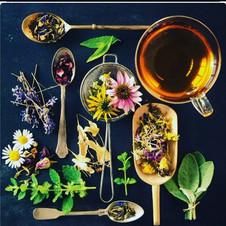 Tea picture.JPG