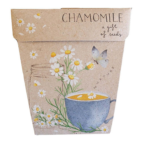 Chamomile Gift of Seed
