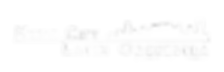 Music City Latin Orchestra Logo white.pn