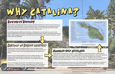 Observation Page Catalina.jpg
