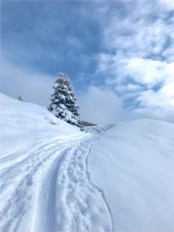 Skitourspuren