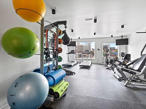 Harlow Gym