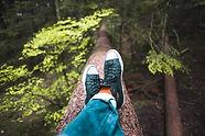 jumpstory-sedim na drevesu640-071756.jpg