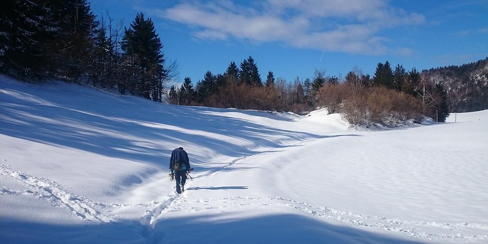 Winter Wilderness Weekend Survival
