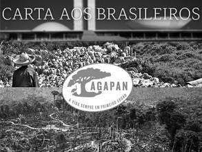 """""""Sorteada"""" para vaga no Conama, Agapan publica """"Carta aos Brasileiros"""""""
