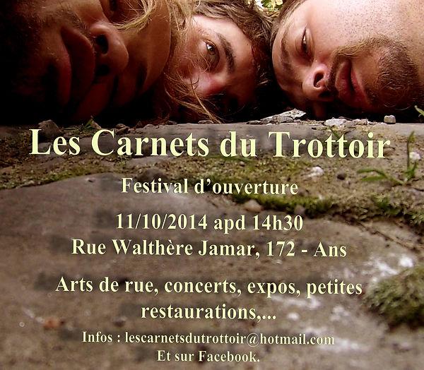 Festival du Trottoir 2014 - Les Carnets du Trottoir