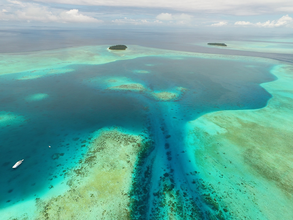 Diverse and unbelievable underwater topography of Papua New Guinea's bluewater destinations