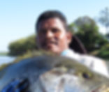Sport Fishng PNG Pro Guide