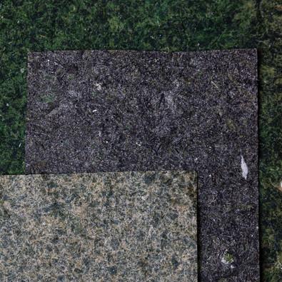 Papier d'algue de Samuel Somatis