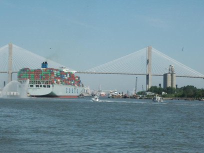 Georgia's ports shake off trade worries and post record year