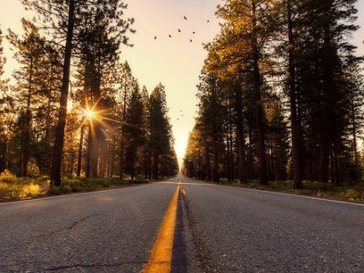 California Takes Trio of Clean Transportation Actions