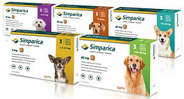 Simparica_Zoetis-800px-5df26be9.jpg