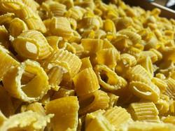 Ditalini pasta Curry