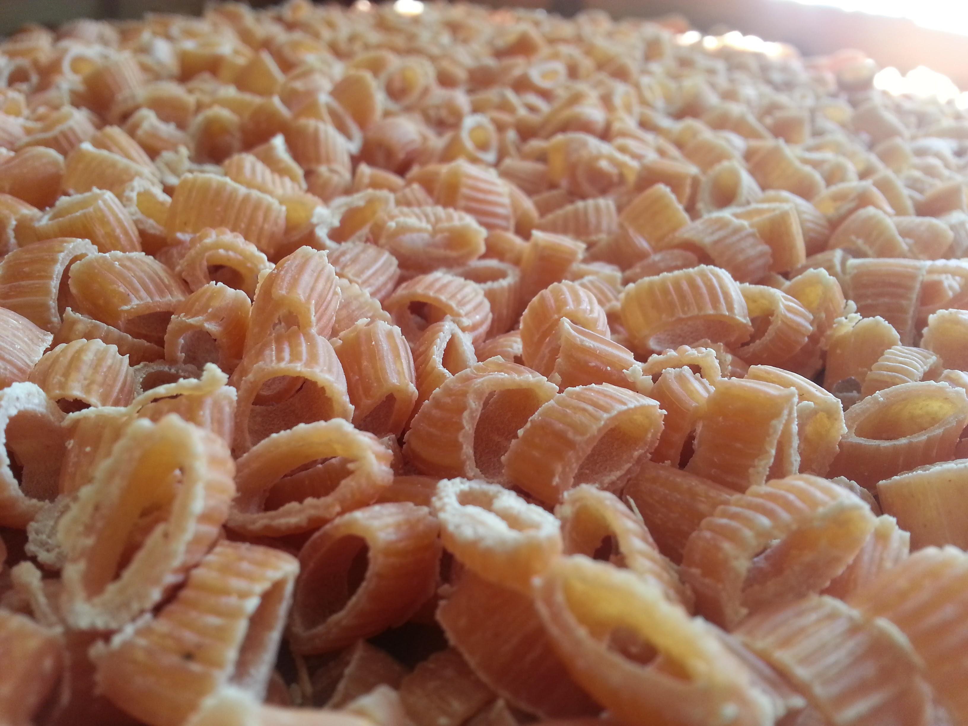 Ditalini pasta tomates séchées