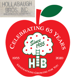 HOLLABAUGH logo.png