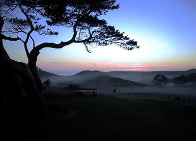 heatherhill.jpg