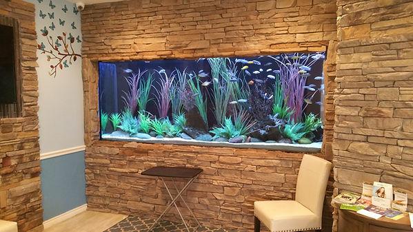 450 Gallon freshwater cichlid aquarium
