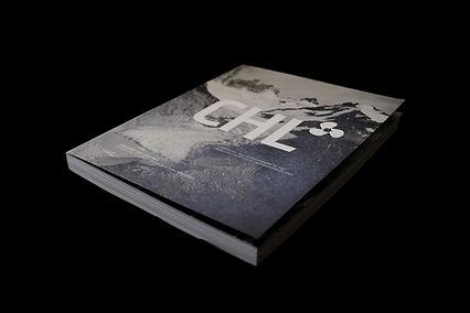 chile landskrona fotografia photography arte art historia history