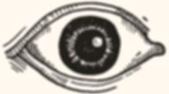 optics logo copy.jpeg.jpg