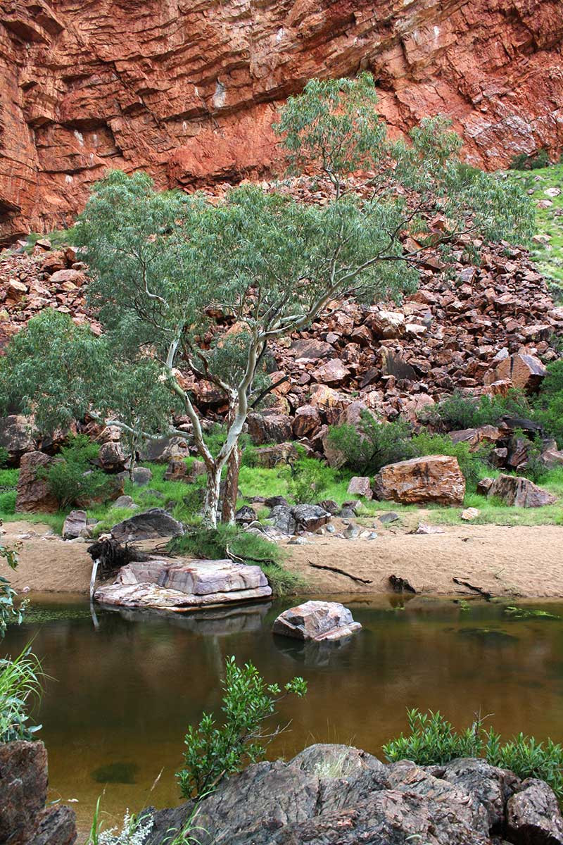 Simpsons Gap, Alice Springs