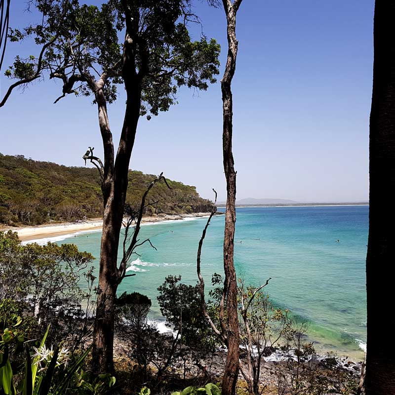 View of the Ocean from Noosa National Park