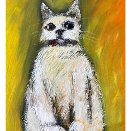 Haughty-cat-web.jpg