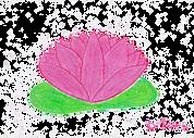 Lotus gif rose pastel