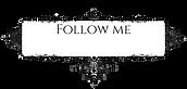 follow2.png