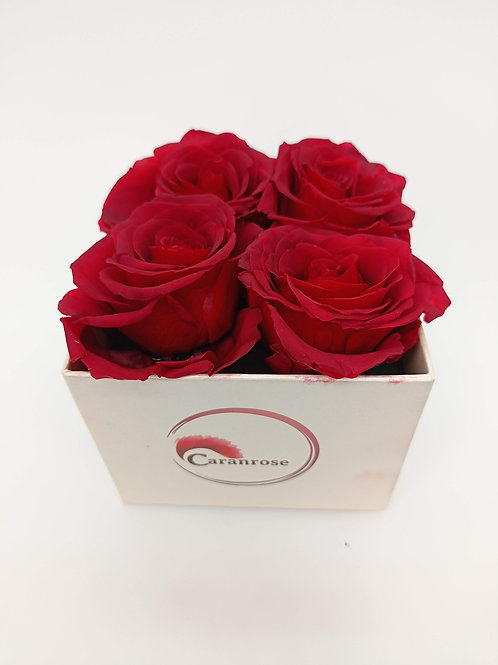 Long lasting Rose - Square box- Shelf life more than 1 year