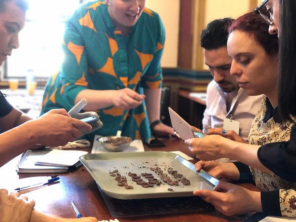 cacaograder4.jpg