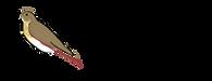 zorzal_logo.png