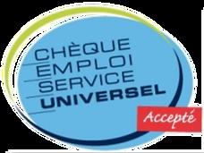 logo-cesu_edited_edited.png