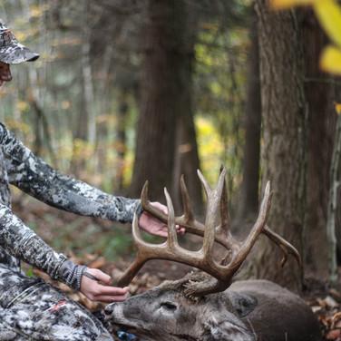 Pennsylvania Mountain Buck