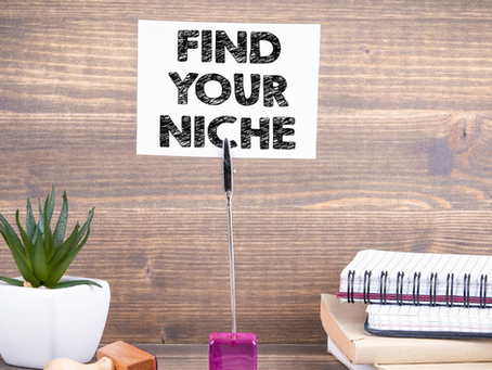 4 ways you can dominate your niche