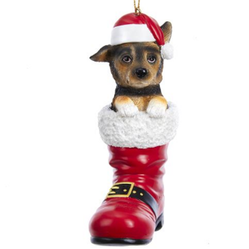 dog in boot german shepard