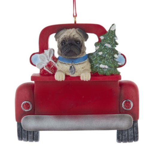 dog in red truck pug