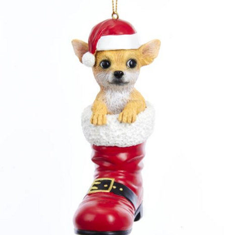 dog in boot chihuahua