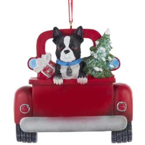 dog in red truck boston terrier