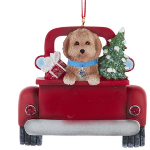 dog in red truck golden doodle