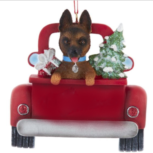 dog in red truck german shepard